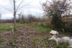 زمین باغ بر جاده اصلی