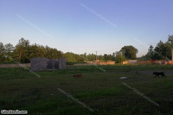 ضلع شرقی زمین