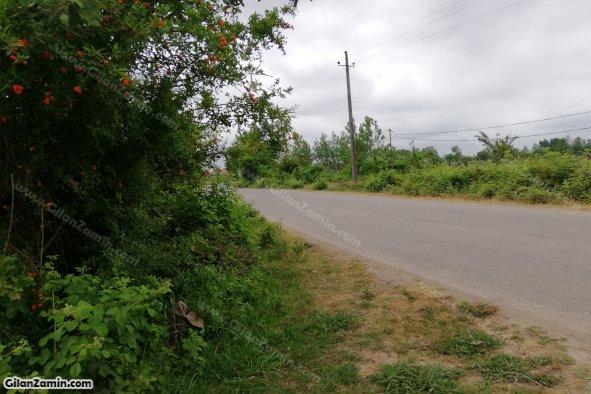 جاده و بر اصلی زمین