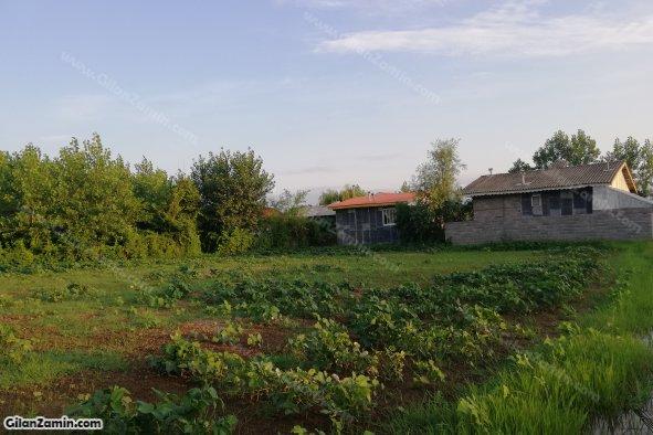 زمین باغی داخل بافت مسکونی