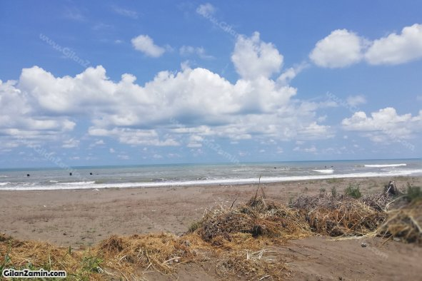زمین ساحلی
