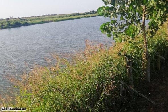 رودخانه سفیدرود