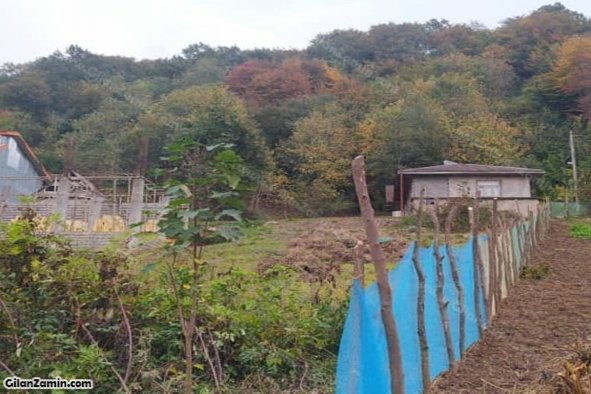 زمین مسکونی در کوهبنه لاهیجان