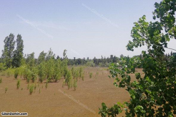 منابع طبیعی و ساحل