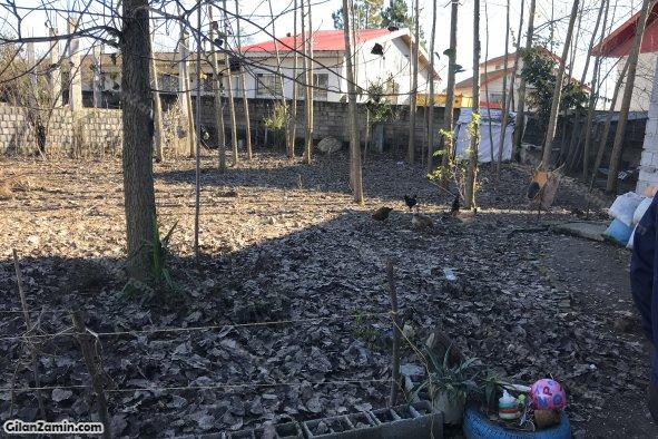 نمای باغ