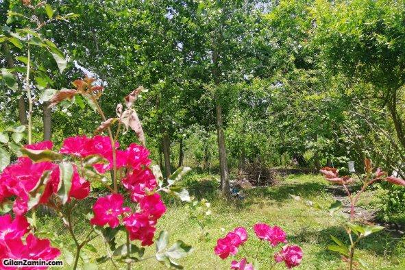 ویلا باغ روستایی