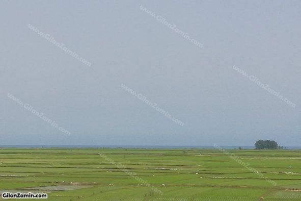 ویلا دوبلکس ساحلی